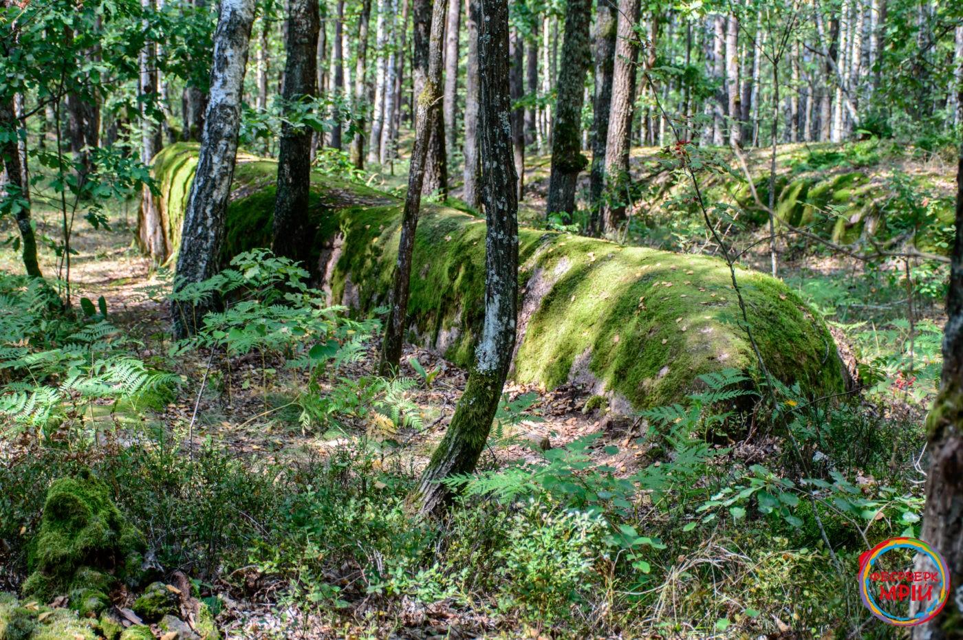 Валуни Камінного села