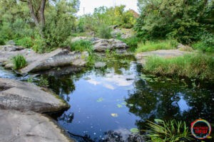 Ландшафтний парк Замку Радомисль